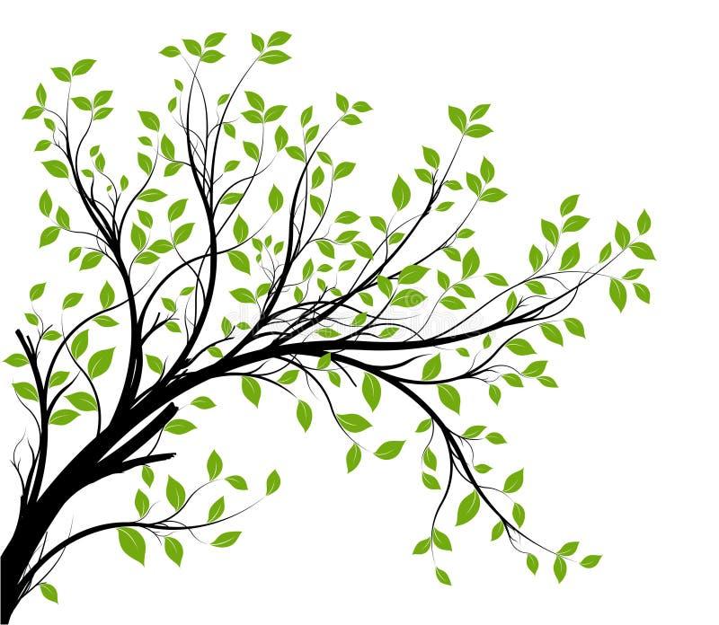 Vektor - dekorativer Zweig vektor abbildung