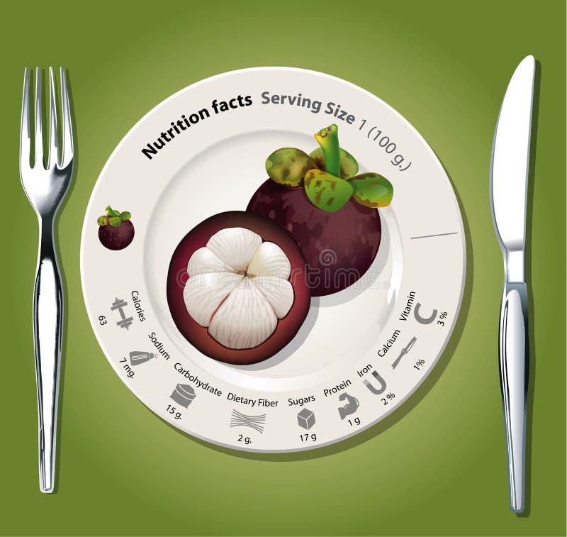Vektor der Nahrungstatsachenmangostanfrucht lizenzfreie abbildung