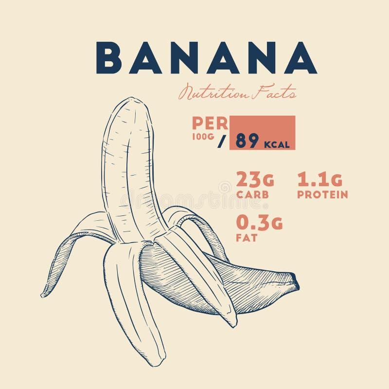Vektor der reifen Banane der Nahrungstatsachen lizenzfreie abbildung
