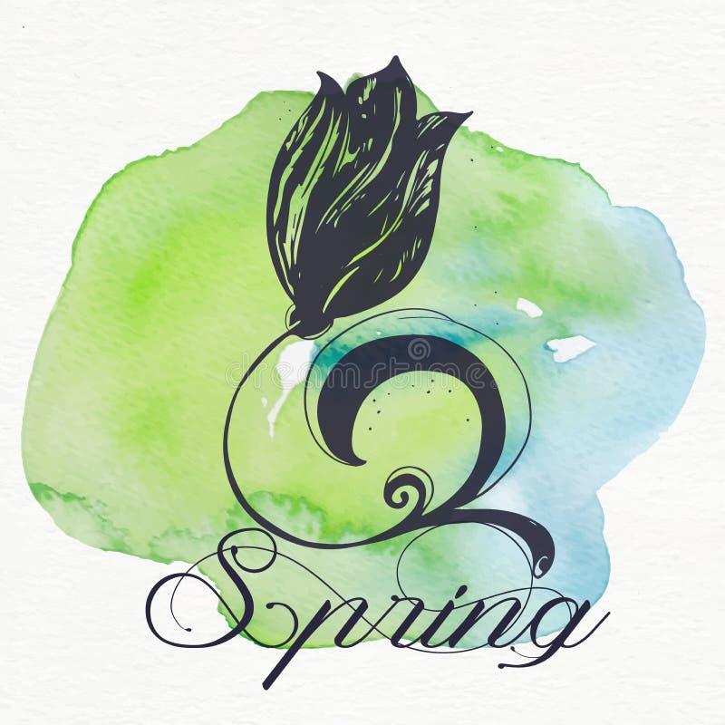 Vektor der schönen Schattenbildblumentulpe und Frühling simsen lizenzfreie abbildung