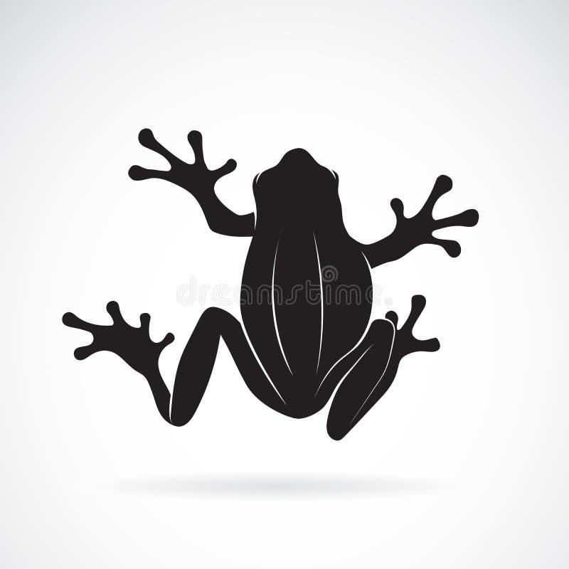 Vektor des Froschdesigns auf weißem Hintergrund amphibie tier Froschikone lizenzfreie abbildung