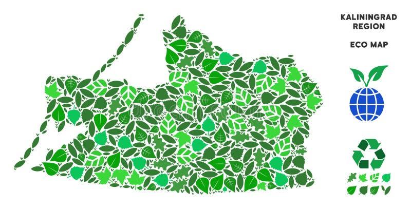 Vektor Eco-Grün-Collagen-Kaliningrad-Regions-Karte stock abbildung