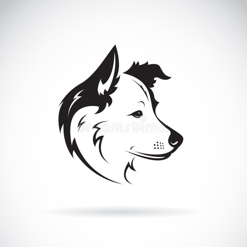 Vektor eines border collie-Hundes auf weißem Hintergrund haustier vektor abbildung