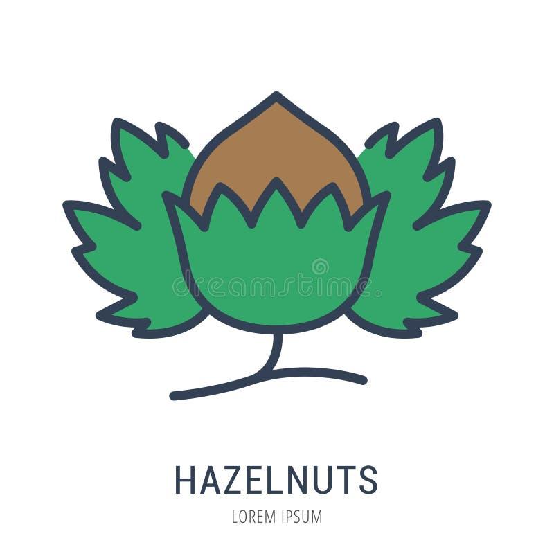 Vektor einfacher Logo Template Hazelnuts lizenzfreie abbildung