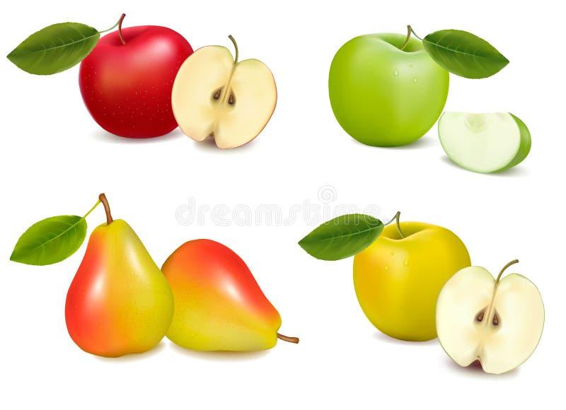 vektor för äpplegrupppears royaltyfri illustrationer