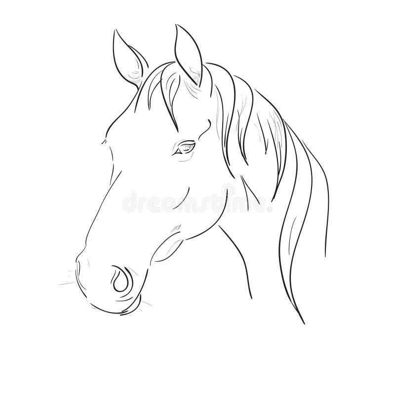 Vektor för hästhuvud stock illustrationer