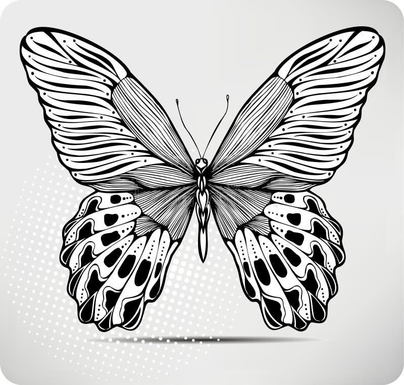 vektor för illustration för fjärilsteckningshand vektor illustrationer