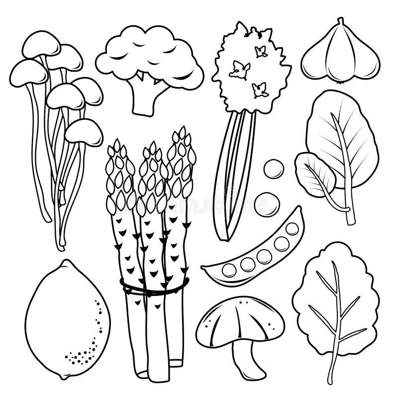 Vektor för samling för symbol för grönsakuppsättningsvart royaltyfri illustrationer