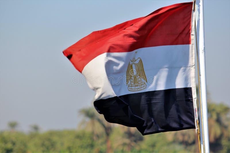 vektor för stil för tillgänglig egypt flagga glass royaltyfria bilder