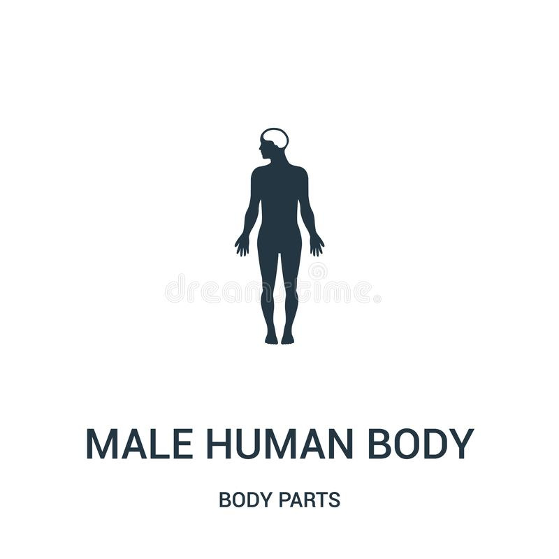 vektor för symbol för manlig människokroppkontur variant- från kroppsdelsamling Tunn linje variant- översikt för manlig människok vektor illustrationer