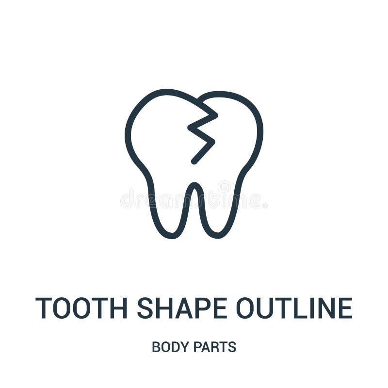 vektor för symbol för tandformöversikt från kroppsdelsamling Tunn linje illustration för vektor för symbol för översikt för tandf stock illustrationer