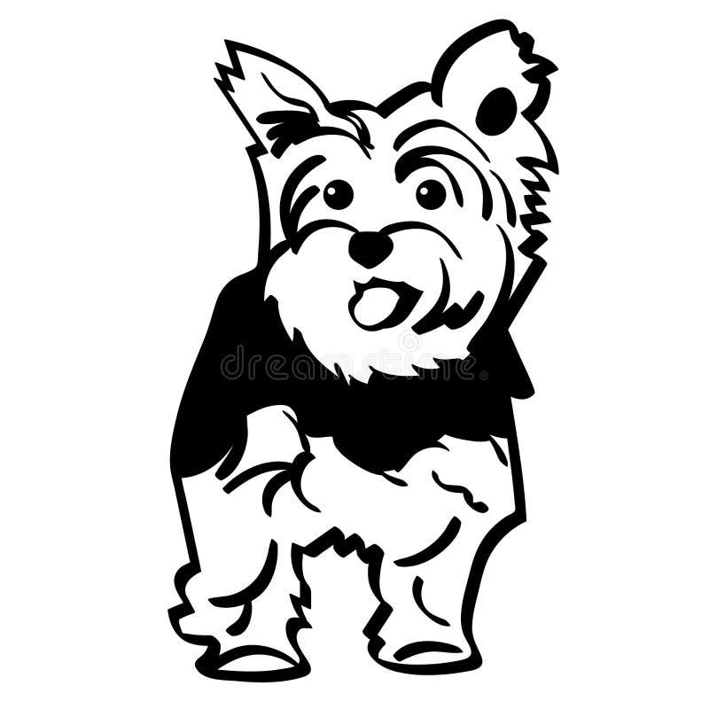 Vektor för Yorkshire terrier, Eps, logo, symbol, konturillustration vid crafteroks för olikt bruk Bes?ka min website p? https://c vektor illustrationer