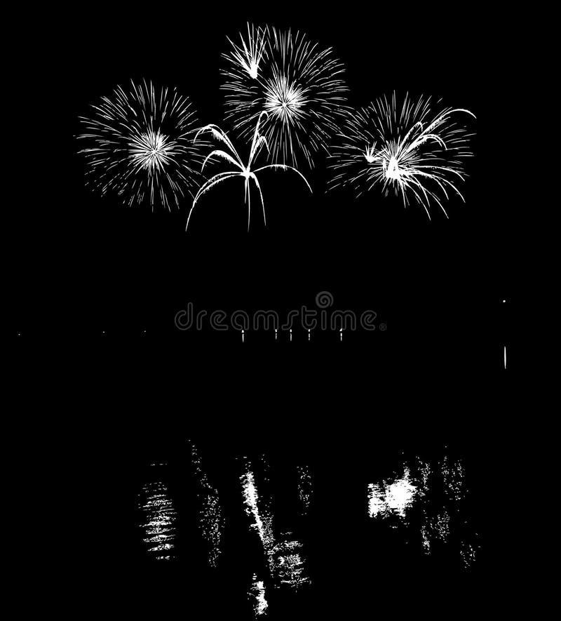 Vektor-Feuerwerke mit Reflexion auf See lizenzfreie abbildung