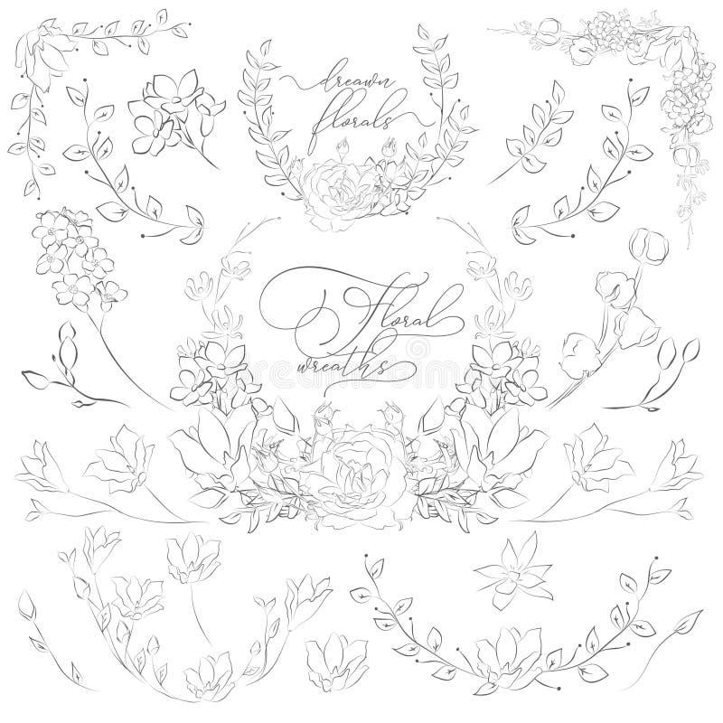 Vektor gezeichnete Anlagen und Blumen, Kränze, Ecken, Niederlassungen vektor abbildung