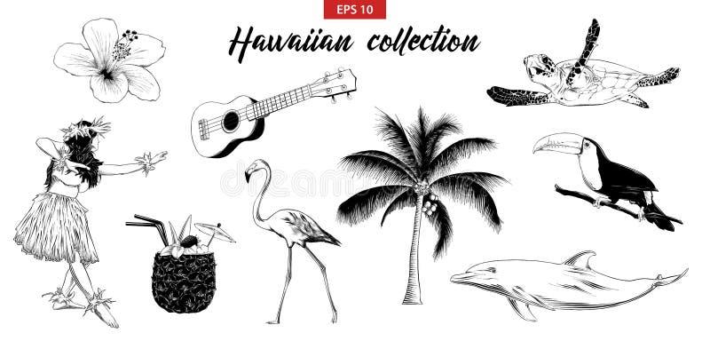 Vektor gravierte Artillustration für Logo, Emblem, Aufkleber oder Plakat Handgezogener Skizzensatz hawaiisches Mädchen, Ukulelegi lizenzfreie abbildung