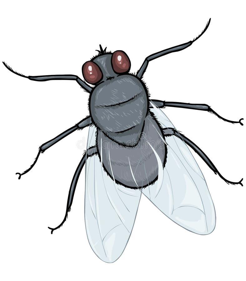 Vektor-Karikatur-Fliege lizenzfreie abbildung