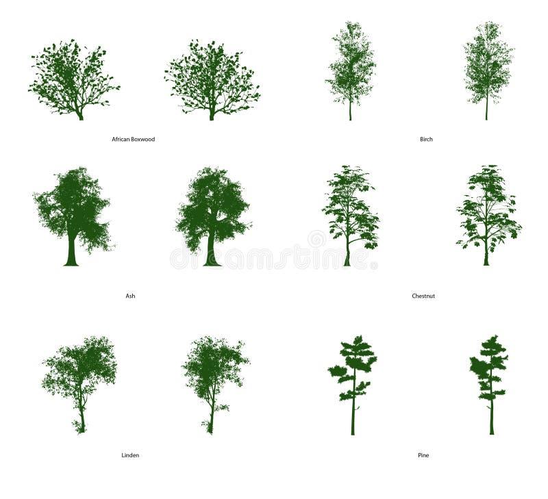 6 Vektor-Klipp Art Trees Stockbilder