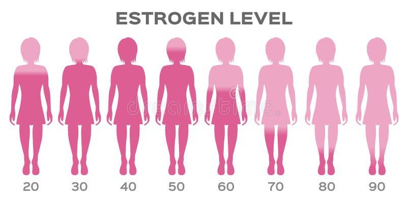 Vektor/kvinna för östrogenhormonnivå stock illustrationer