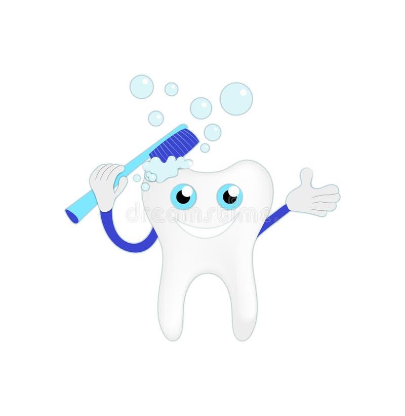 Vektor-Reinigungs-Zahn-Illustration lokalisiert auf weißem Hintergrund lizenzfreie abbildung
