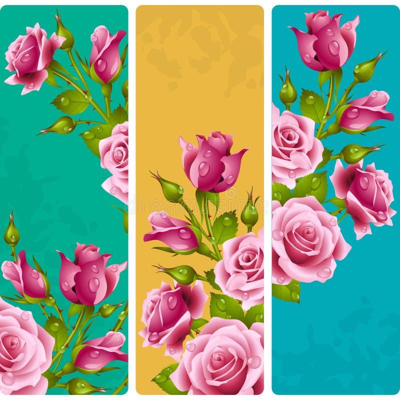 Vektor-rosa Rosen-Rahmen Satz vertikale mit Blumenfahnen vektor abbildung