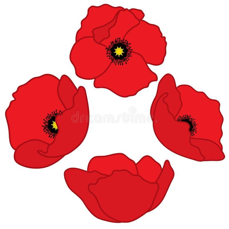 Vektor-Rot-Mohnblumen Poppy Vector Illustration stock abbildung