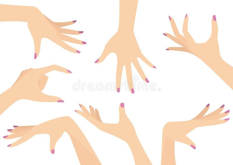 Vektor-Satz Schönheits-Hände stockfoto