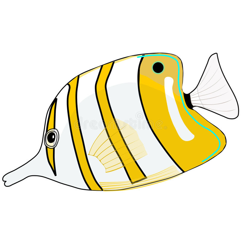 Vektor-Schmetterlings-weiße gelbe Fische vektor abbildung
