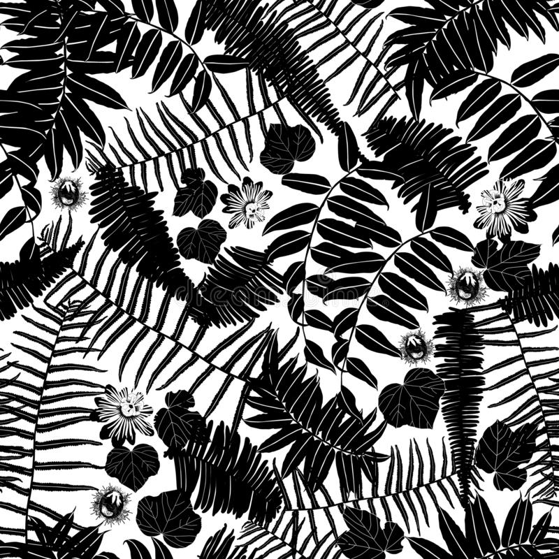 Vektor Schwarzweiss--sillouette nahtloses Muster mit Farnen, Blättern und wilder Blume Passend für Gewebe, Geschenkverpackung und stock abbildung