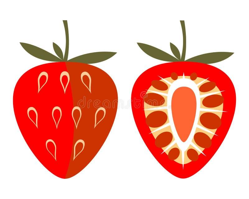 Vektor trägt Illustration Früchte Ausführliche Ikone der Erdbeere, ganz und halb, lokalisiert über weißem Hintergrund vektor abbildung