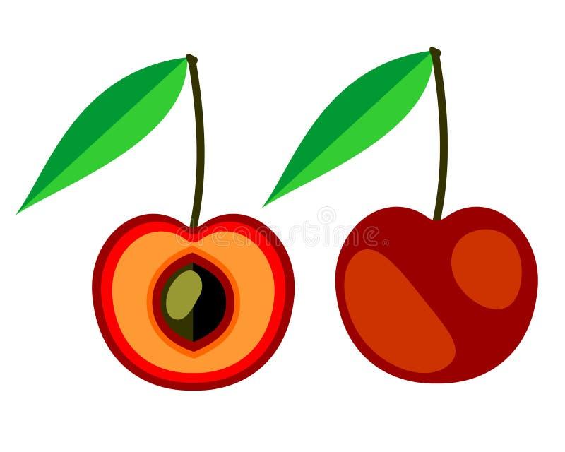 Vektor trägt Illustration Früchte Ausführliche Ikone der Kirsche, ganz und halb, lokalisiert über weißem Hintergrund lizenzfreie abbildung