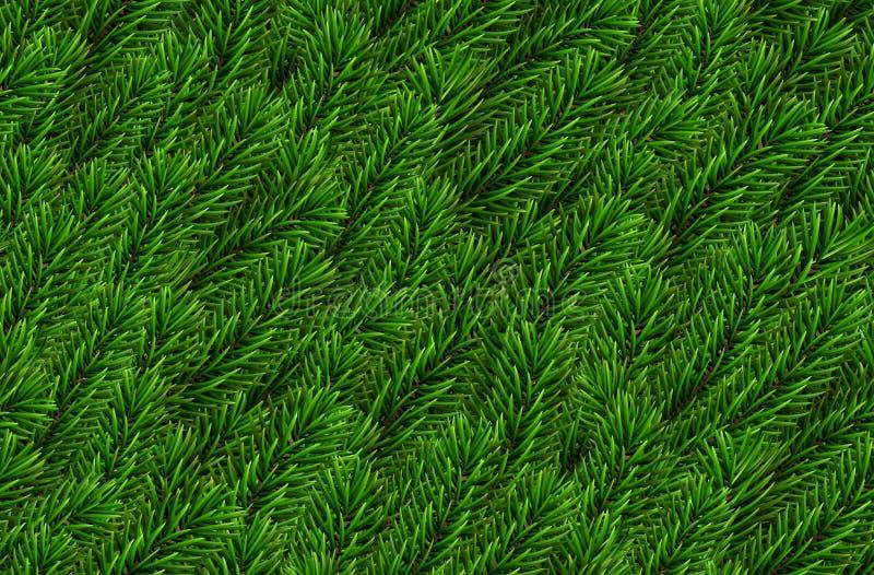 Vektor-verzweigt sich nahtlose naturalistische Blick-Kiefer realistischer gezierter Baum des Hintergrund Tannenzweig-Weihnachtsna lizenzfreie abbildung