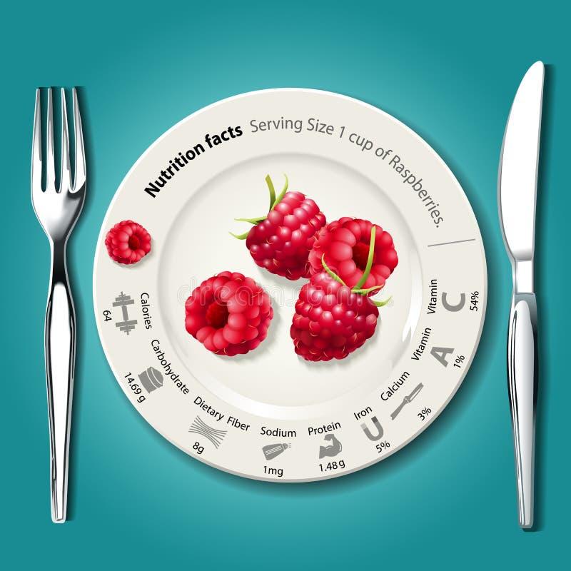 Vektor von Nahrungstatsachen in den Himbeeren auf weißer Platte mit KNI stock abbildung