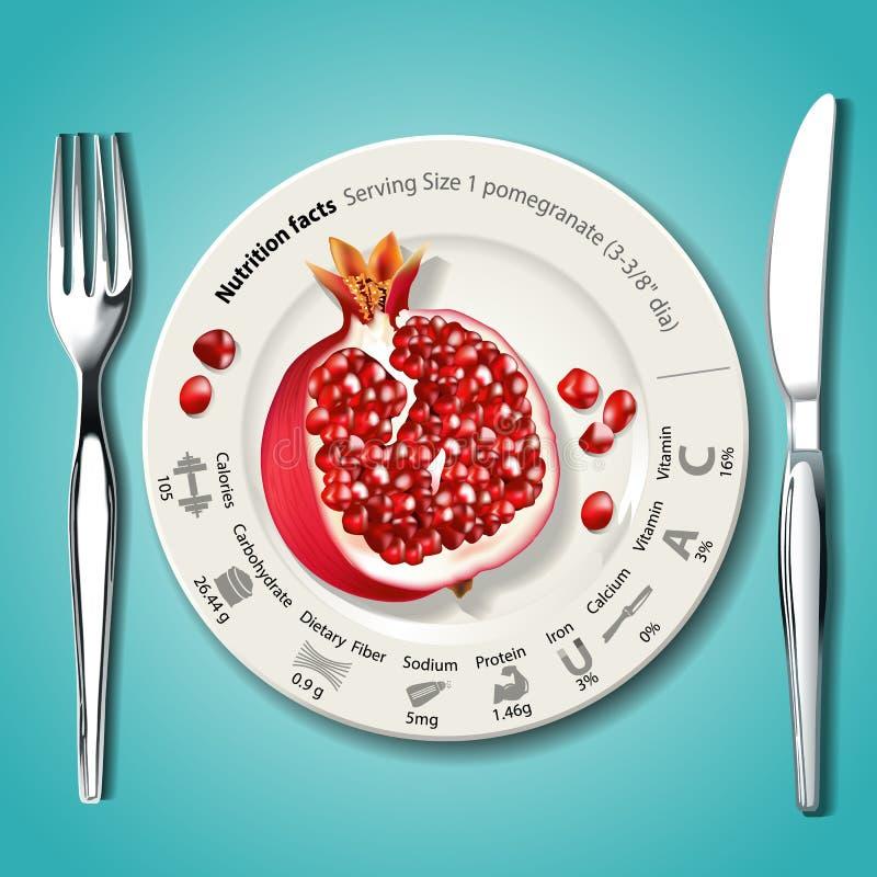 Vektor von Nahrungstatsachen im Granatapfel auf weißer Platte mit KNI stock abbildung