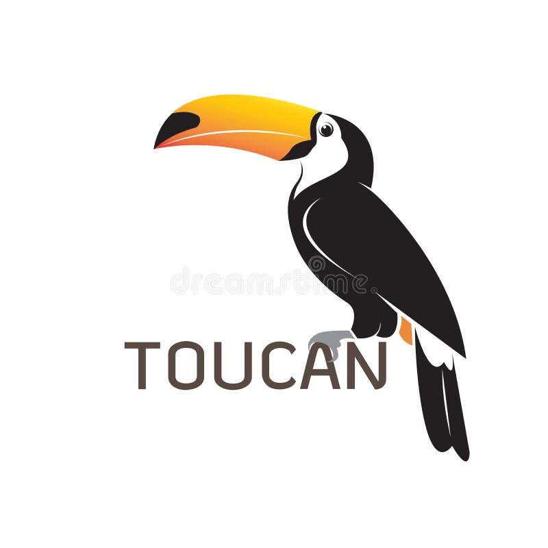 Vektor von Tukan birb Design auf weißem Hintergrund Wilde Tiere stock abbildung