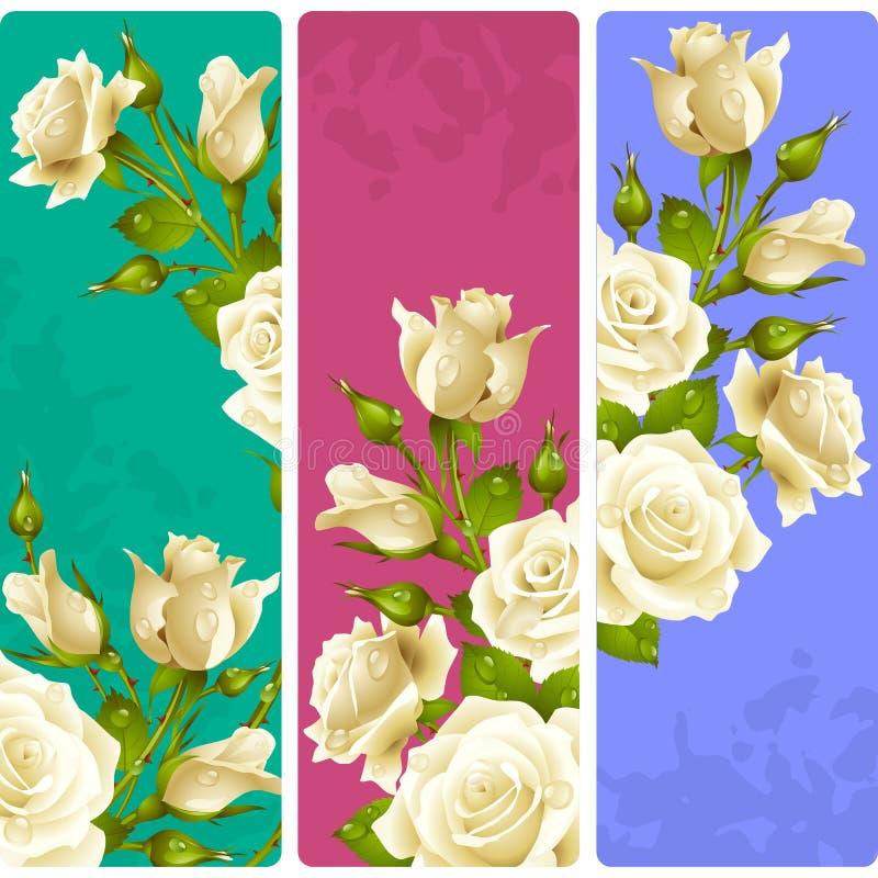 Vektor-weiße Rosen-Rahmen Satz vertikale mit Blumenfahnen stock abbildung