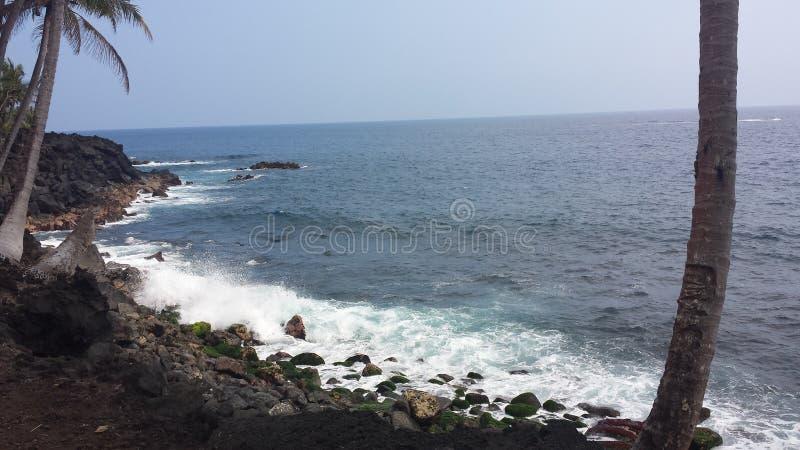 Vektorabbildung des tropischen Strandes lizenzfreie stockfotografie