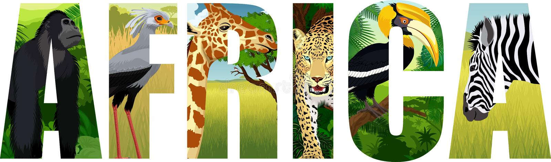 VektorAfrika illustration med giraffet, gorillan, leoparden, sekreterare-fågeln, sebran och den stora hornbillen vektor illustrationer