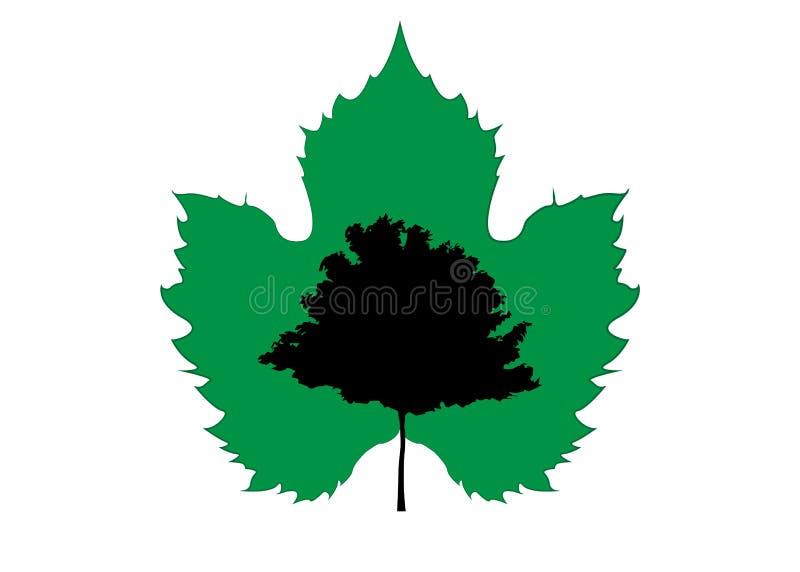 Vektorahornbaumschattenbild mit grünem Ahornblatt Ökologie-Biohof-Logoentwurf, biologisches Konzeptnatur-Bewahrungsvertrauen stock abbildung
