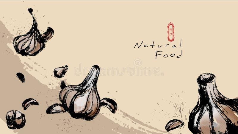 Vektoraquarellknoblauch, chinesische Schriftzeichen: Natur vektor abbildung