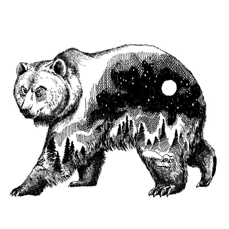 Vektorbärndoppelbelichtungs-Tätowierungskunst kanada Berge, Kompass Braunbär-Bärngraubärschattenbild-T-Shirt Design vektor abbildung
