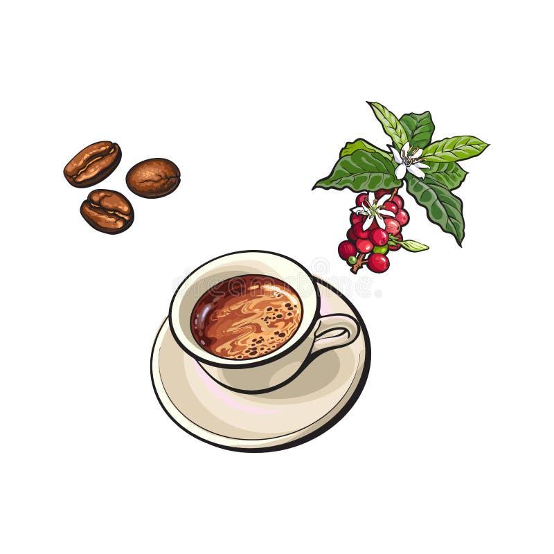 Vektorbönor, kopp kaffe, kaffeträdfilial royaltyfri illustrationer