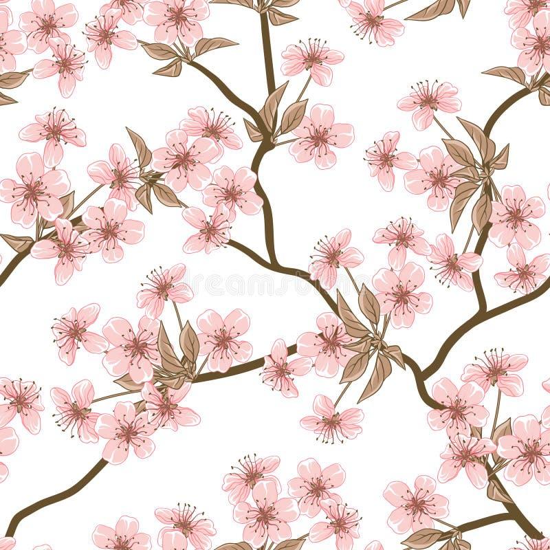 Vektorbakgrund för körsbärsröd blomning (Sömlöst stock illustrationer