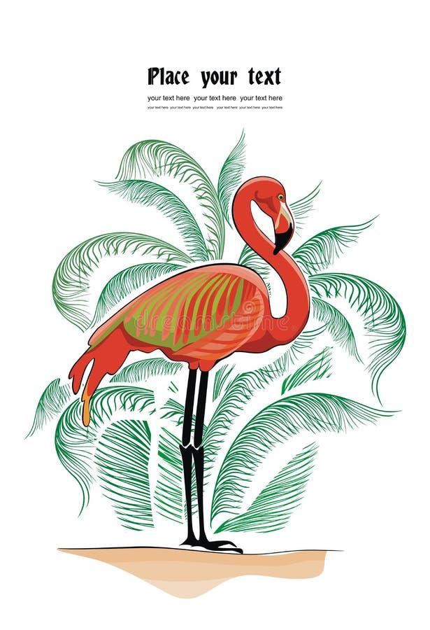 Vektorbakgrund Med Flamingoen Royaltyfri Bild