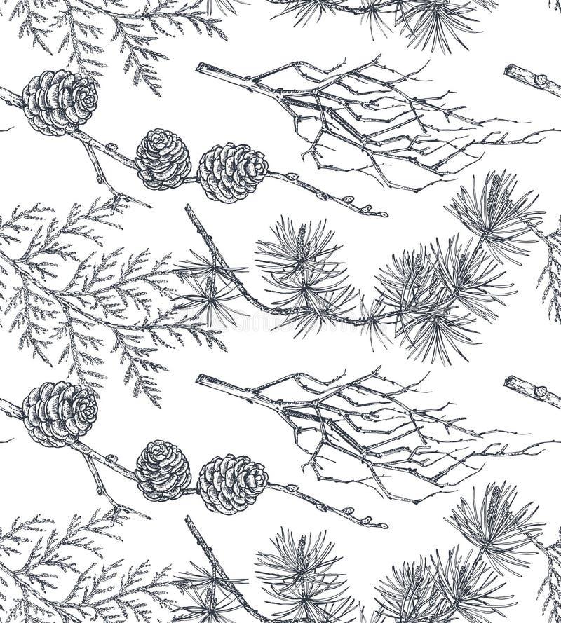 Vektorbakgrund med handen drog barrträdträd skissar in stil stock illustrationer