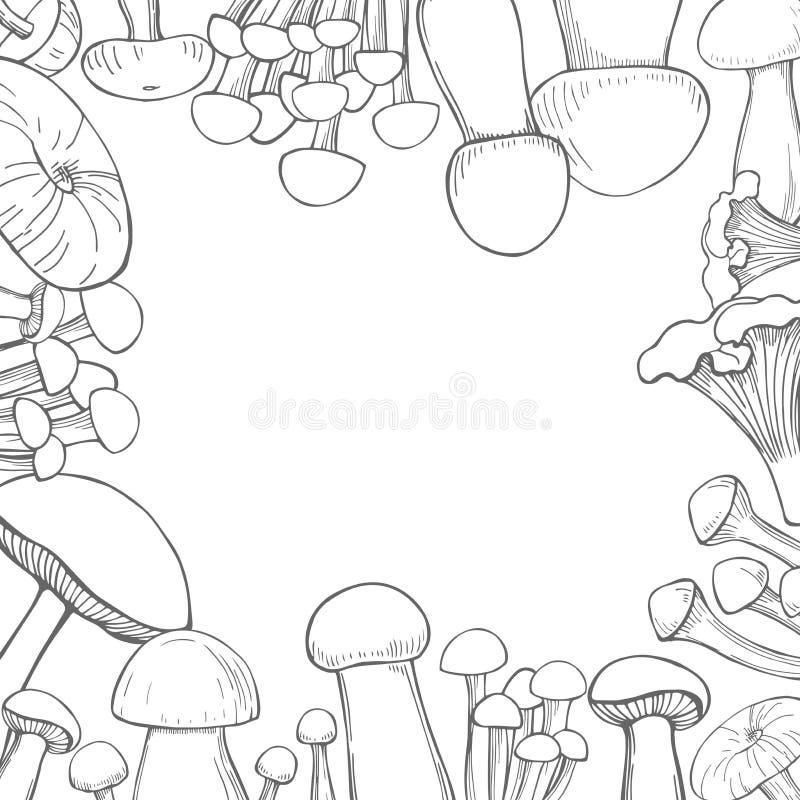 Vektorbakgrund med utdragna champinjoner för hand Skissa illustrationen stock illustrationer
