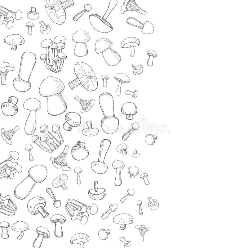 Vektorbakgrund med utdragna champinjoner för hand Skissa illustrationen royaltyfri illustrationer