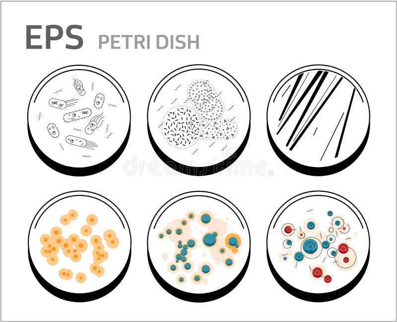 Vektorbakterieceller i isolerad petri disk royaltyfri illustrationer