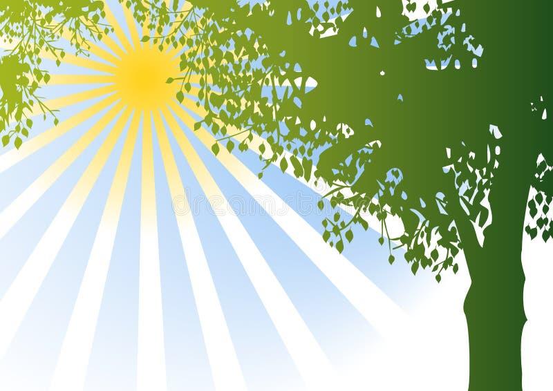 Vektorbaum und -sonnenschein lizenzfreie abbildung