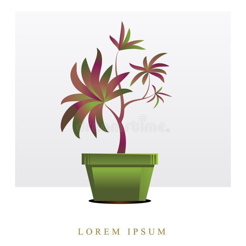 Vektorbild av blommor och växter i krukor, ikebana stock illustrationer