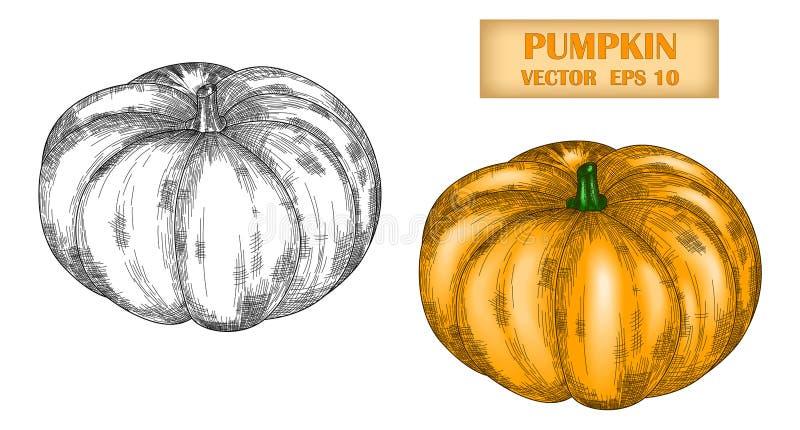 Vektorbild av endragen pumpa Redigerbar slaglängd royaltyfri illustrationer